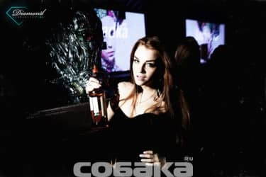 tequila girl,